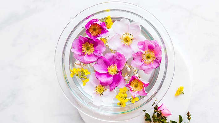 Clean Silk Flower with Alcohol