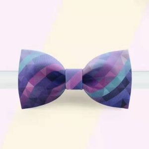 Colorful Bowtie